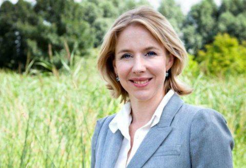Stientje Groen, Tweede Kamerlid, D66