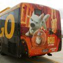 Bus Limited, Nieuw Zeeland