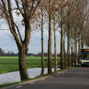 Bus, Arriva