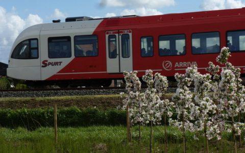 Spurt-trein, Arriva