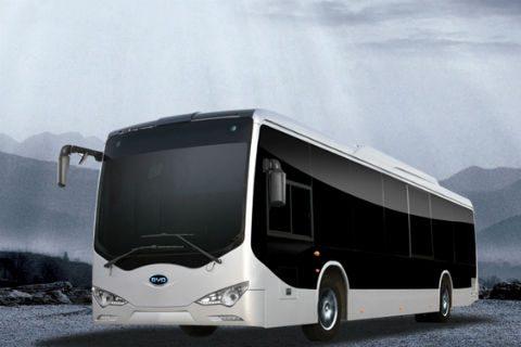 BYD, bus