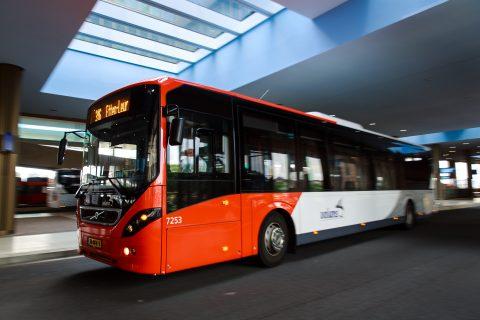 Nachtbus, Arriva, Den Bosch
