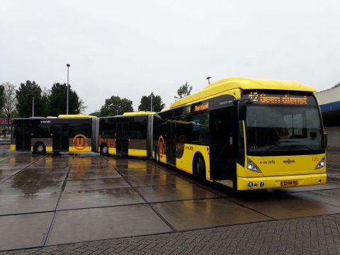 Bus, U-OV, Qbuzz, Utrecht