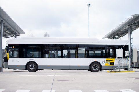 Elektrische bus De Lijn (foto: De Lijn)