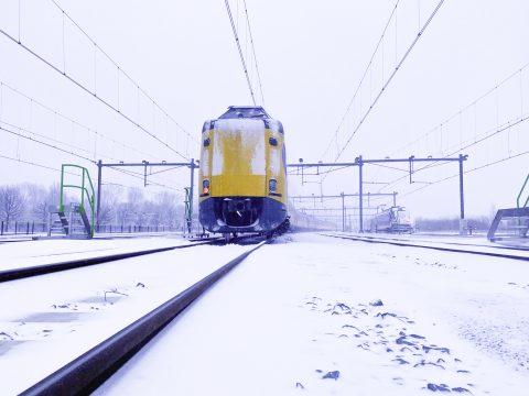 Koploper in de sneeuw (foto: NS)